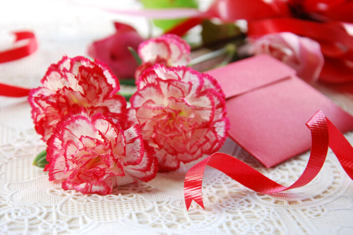 carnation flower meaning  flower meaning, Natural flower