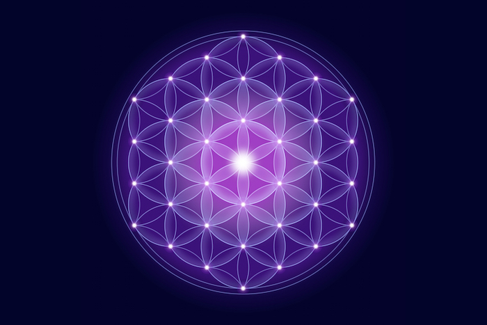 Flower Of Life Meaning Flower Meaning