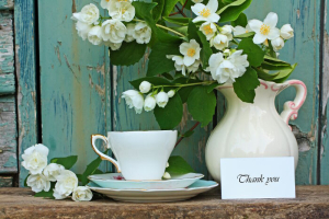 Jasmine flowers teacup and thank you card