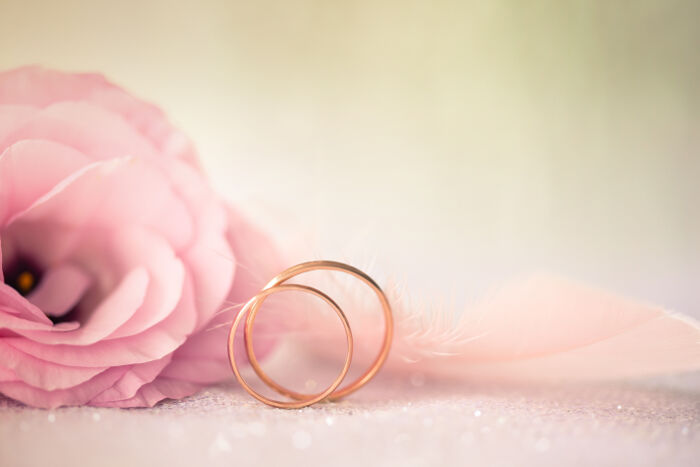 Rings With Rose Petals