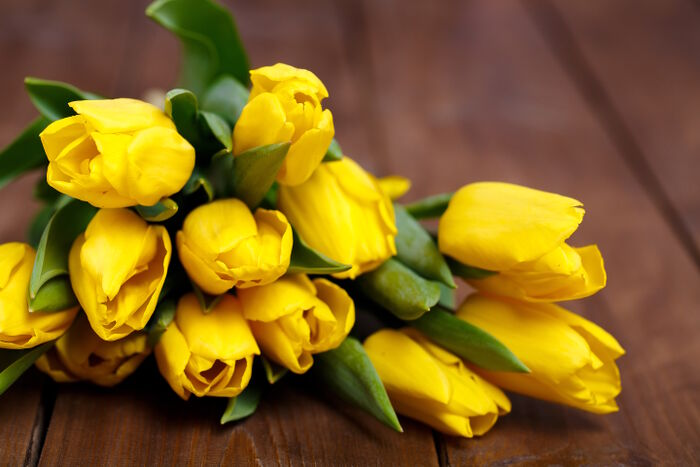 Yellow Flowers Meaning Flower Meaning